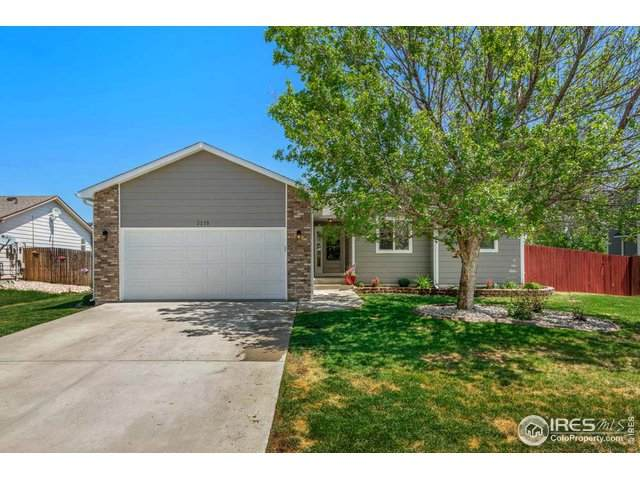 3215 Mammoth Cir, Wellington, CO 80549 (MLS #913679) :: Kittle Real Estate