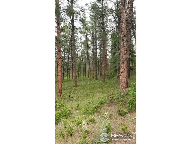 5807 Seminole Trl, Larkspur, CO 80118 (#913858) :: The Griffith Home Team