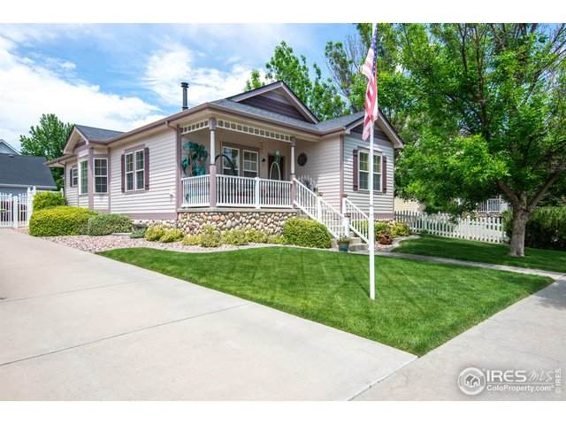 1434 Canal Dr, Windsor, CO 80550 (MLS #913884) :: J2 Real Estate Group at Remax Alliance