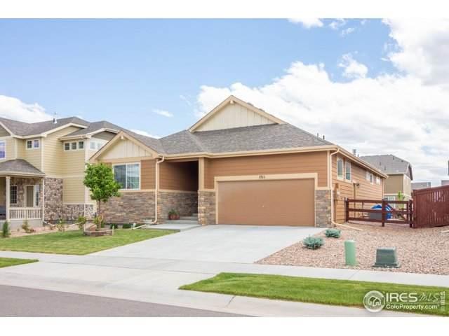 1511 Morning Glow Dr, Windsor, CO 80550 (MLS #914469) :: 8z Real Estate