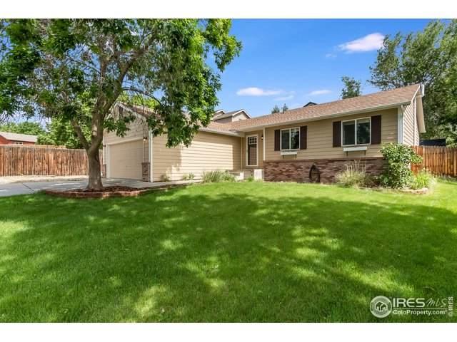 336 Brinn Ct, Fort Collins, CO 80525 (MLS #914671) :: 8z Real Estate