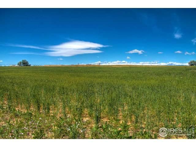 9220 Meadow Farms Dr, Milliken, CO 80543 (MLS #914689) :: June's Team