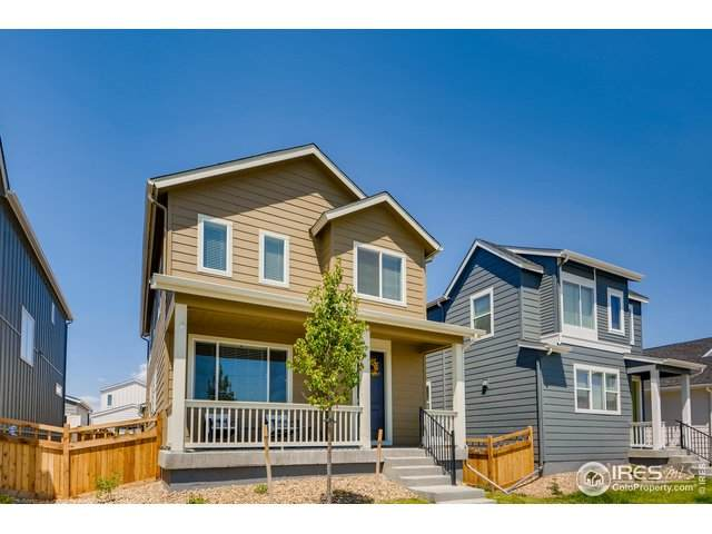 113 Mt Bierstadt St, Brighton, CO 80601 (#915047) :: Kimberly Austin Properties