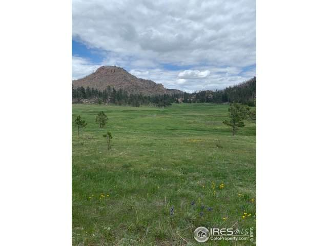 Weiler Ranch Grey Rock Meadow, Laporte, CO 80535 (MLS #915265) :: Jenn Porter Group