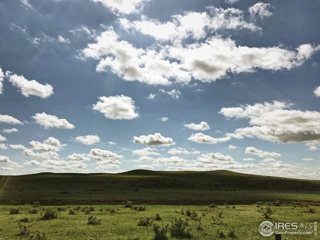 0 Antelope Racer Ct - Photo 1