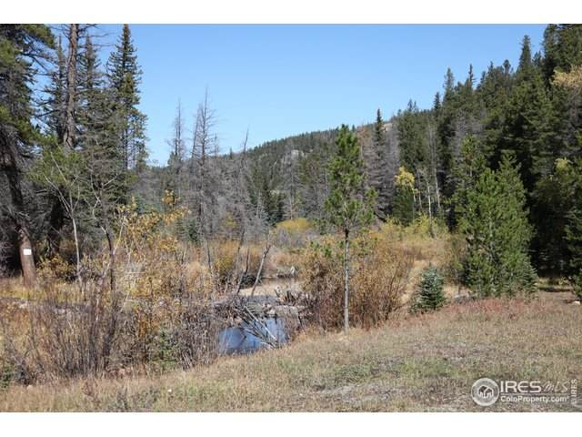 Pingree Park Road, Bellvue, CO 80512 (MLS #915492) :: Downtown Real Estate Partners