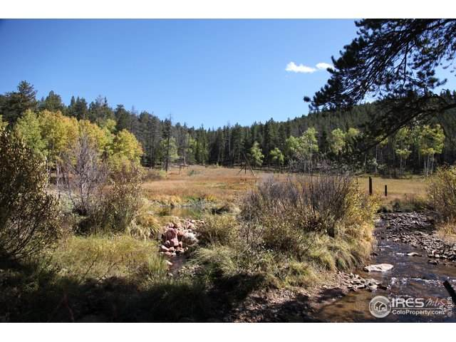 Pingree Park Road, Bellvue, CO 80512 (MLS #915498) :: Downtown Real Estate Partners