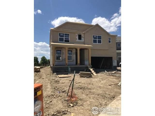 2467 Ravenswood Ct, Longmont, CO 80504 (MLS #915575) :: 8z Real Estate