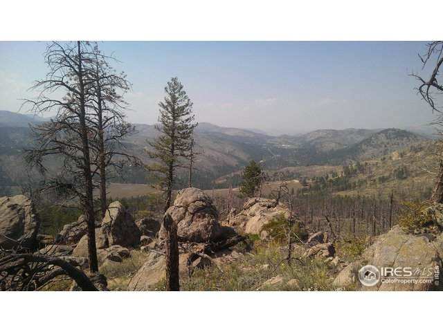 3425 Whale Rock Rd, Bellvue, CO 80512 (MLS #916192) :: Downtown Real Estate Partners