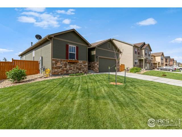 3771 Torch Lily St, Wellington, CO 80549 (MLS #916216) :: Downtown Real Estate Partners