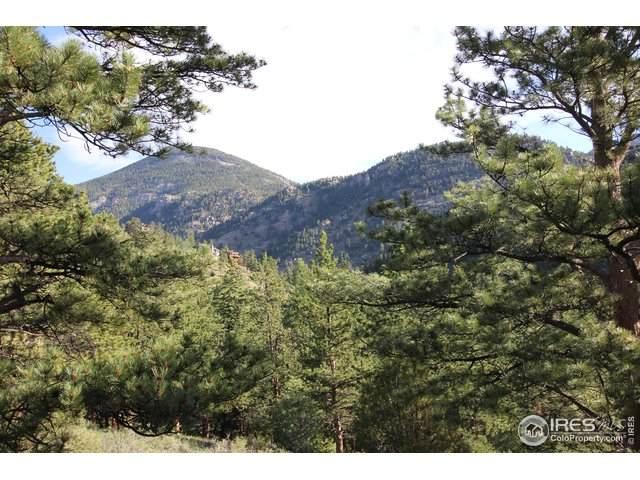 0 Fall River Ct, Estes Park, CO 80517 (MLS #916229) :: 8z Real Estate