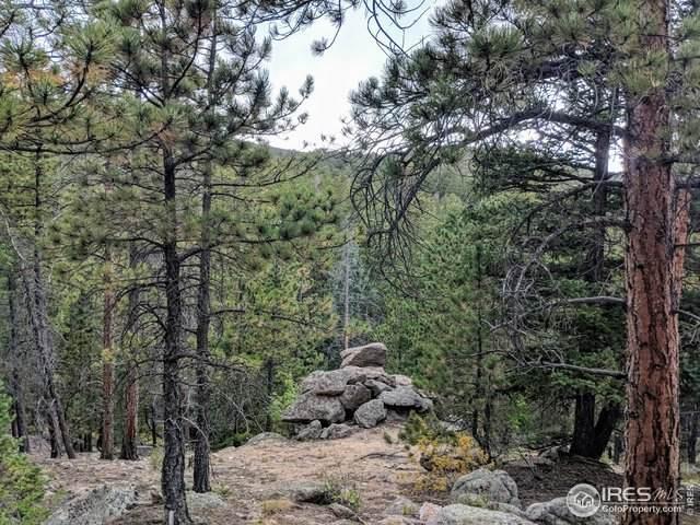 628 Crescent Lake Rd, Golden, CO 80403 (#916431) :: Peak Properties Group