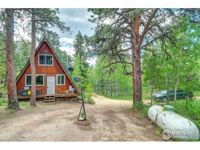 183 Pine Glade Rd, Nederland, CO 80466 (#916629) :: Peak Properties Group