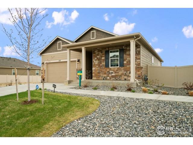 5491 Sandy Ridge Ave, Firestone, CO 80504 (MLS #916706) :: 8z Real Estate