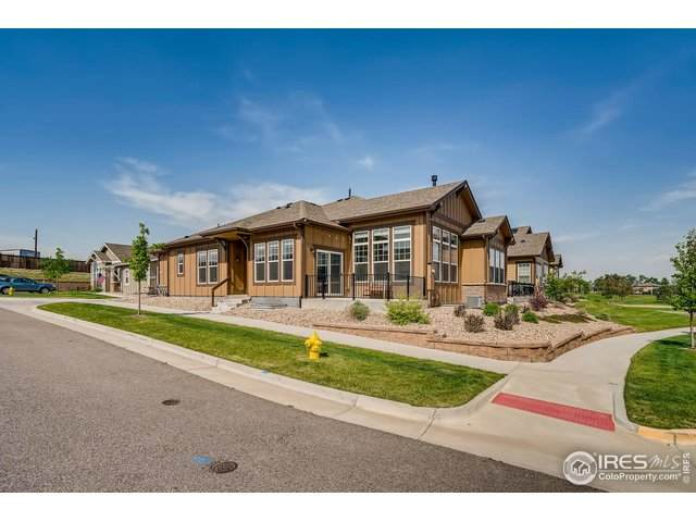 14137 W 88th Pl D, Arvada, CO 80005 (MLS #916848) :: 8z Real Estate