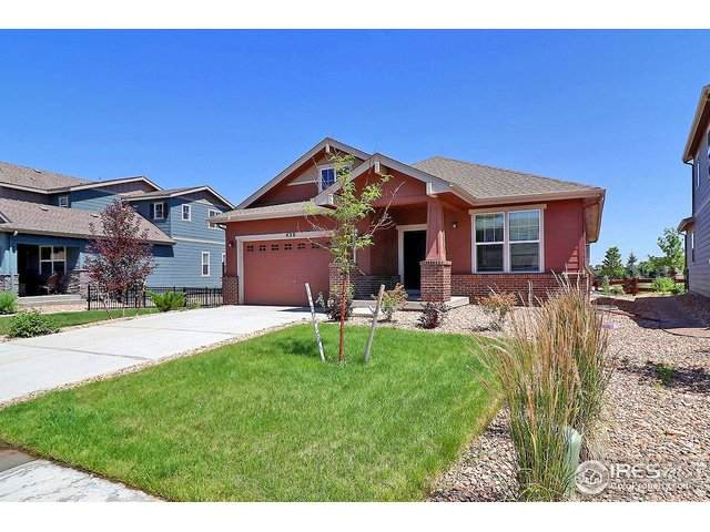 438 Seahorse Dr, Windsor, CO 80550 (#916970) :: West + Main Homes