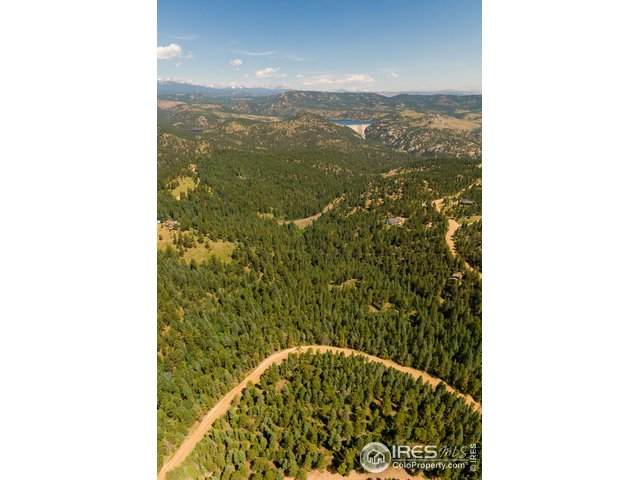 1352 Gross Dam Rd, Golden, CO 80403 (#917036) :: Peak Properties Group