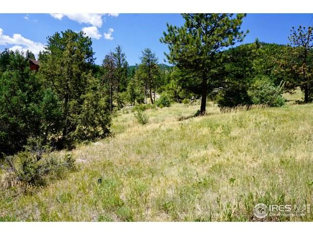 175 Choctaw Rd, Lyons, CO 80540 (#917101) :: Kimberly Austin Properties