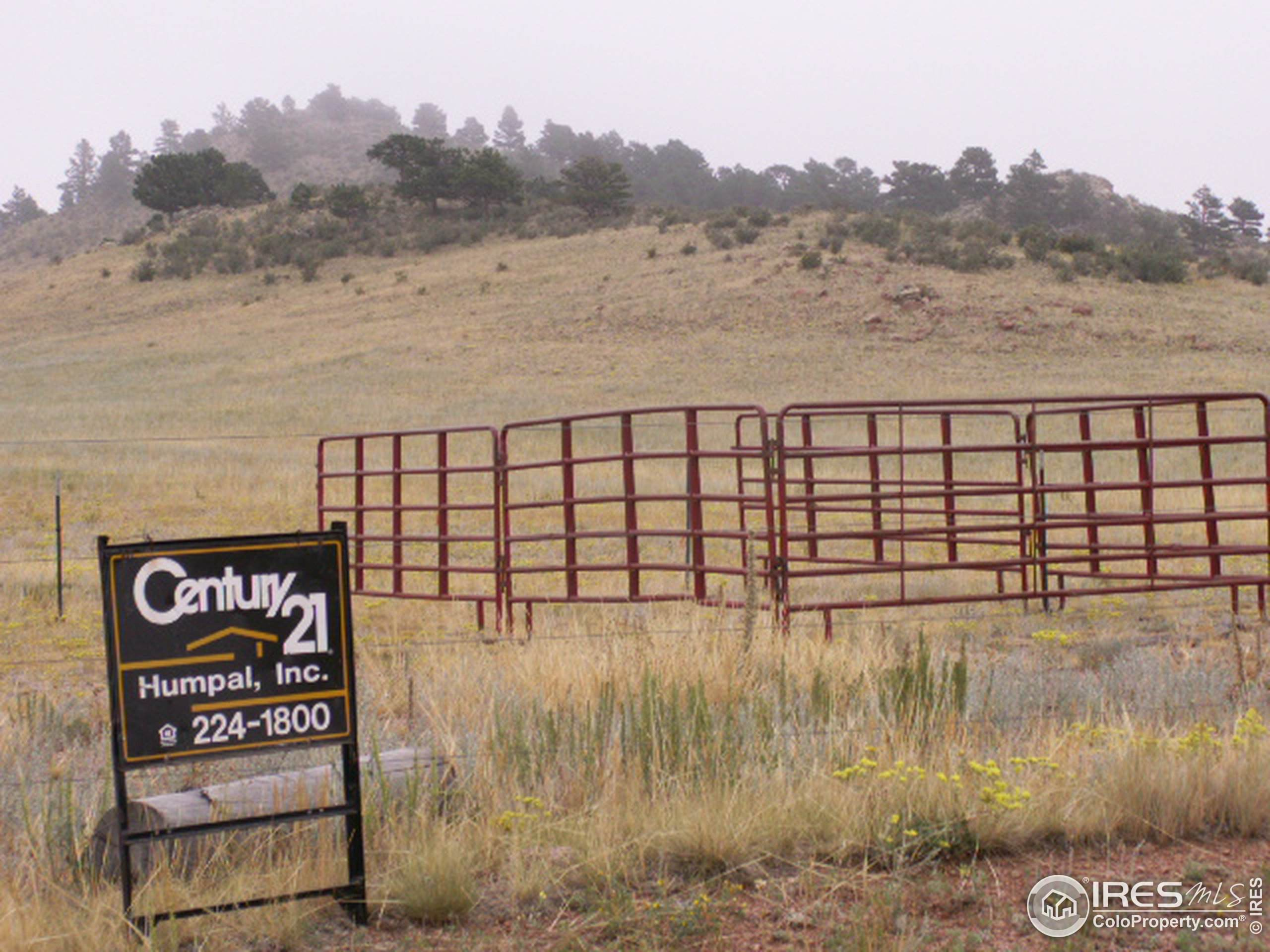 0 Coal Creek Canyon Dr, Nederland, CO 80466 (#917123) :: Peak Properties Group