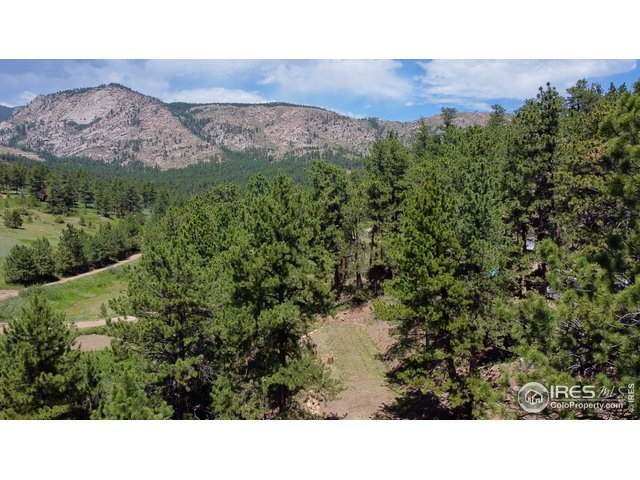 747 Spruce Mountain Dr, Drake, CO 80515 (#917167) :: The Dixon Group