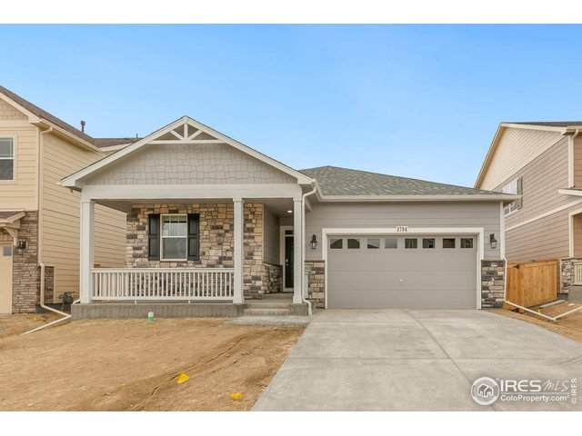1775 Summer Bloom Dr, Windsor, CO 80550 (#917400) :: The Dixon Group