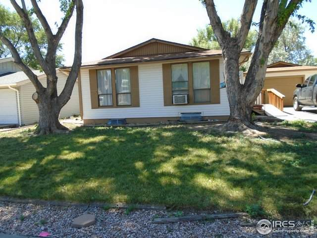 824 Michael Ave, Fort Morgan, CO 80701 (MLS #917429) :: 8z Real Estate