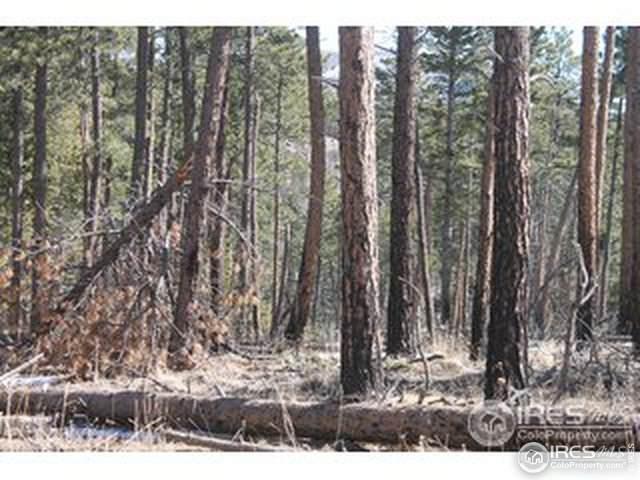 700 Dirt Rd, Bellvue, CO 80512 (#917563) :: James Crocker Team