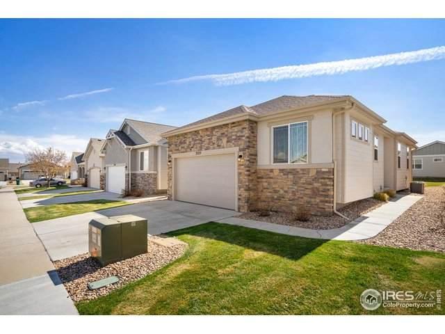 3325 Corvina Ct, Evans, CO 80634 (MLS #917681) :: 8z Real Estate