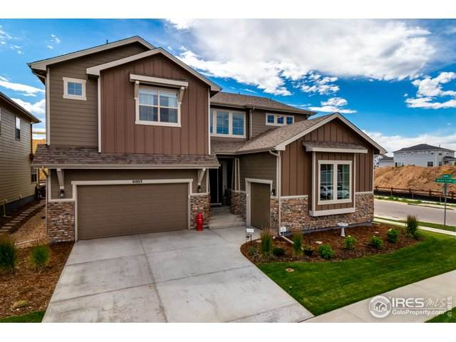 6003 Espalier Ct, Fort Collins, CO 80528 (#917740) :: James Crocker Team