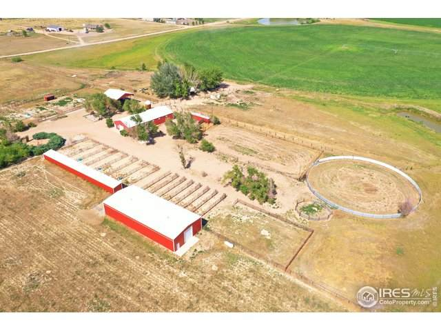 27124 County Road 70, Gill, CO 80624 (MLS #917764) :: 8z Real Estate