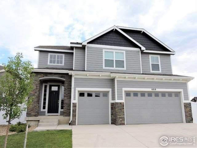 6018 Clarence Dr, Windsor, CO 80550 (MLS #918160) :: 8z Real Estate