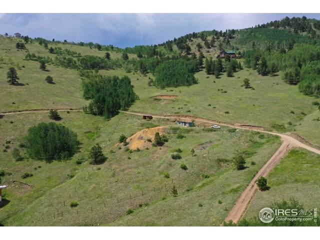 0 Red Tail Ridge Rd, Idaho Springs, CO 80452 (MLS #918179) :: Wheelhouse Realty