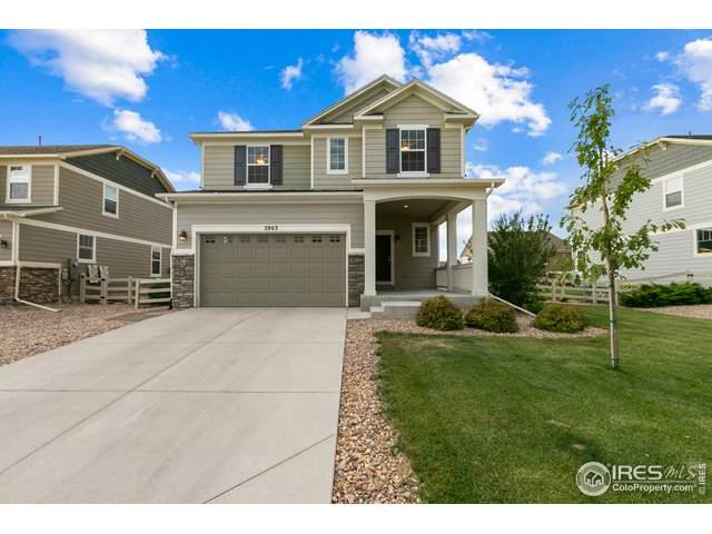 2963 Haflinger Dr, Fort Collins, CO 80525 (#918300) :: My Home Team