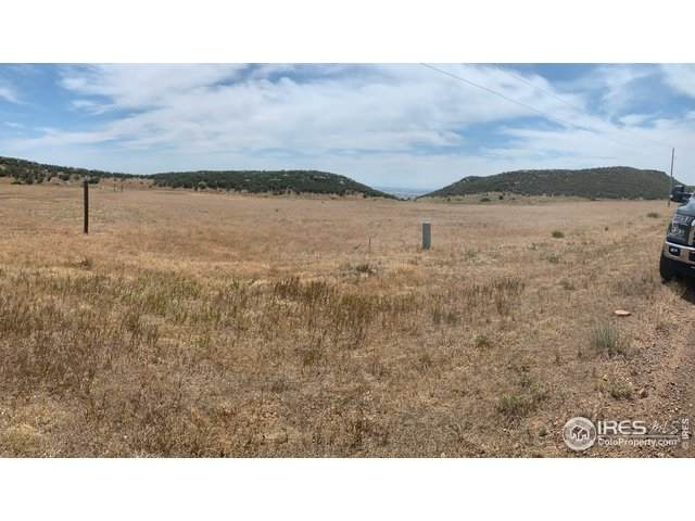 Arapahoe Valley Rd, Laporte, CO 80535 (MLS #918751) :: 8z Real Estate