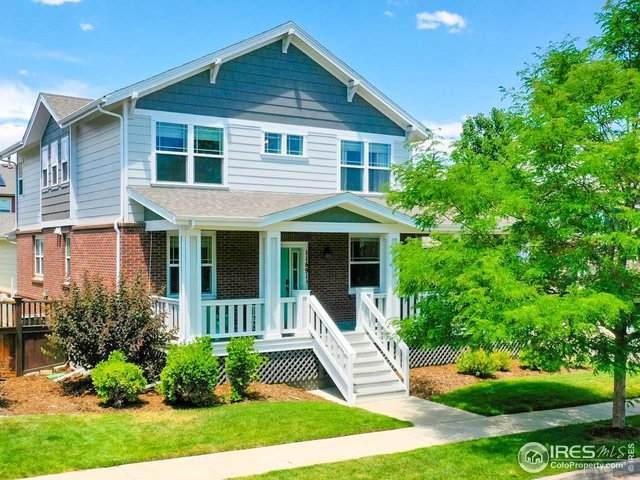 11691 Newton St, Westminster, CO 80031 (MLS #918820) :: Hub Real Estate