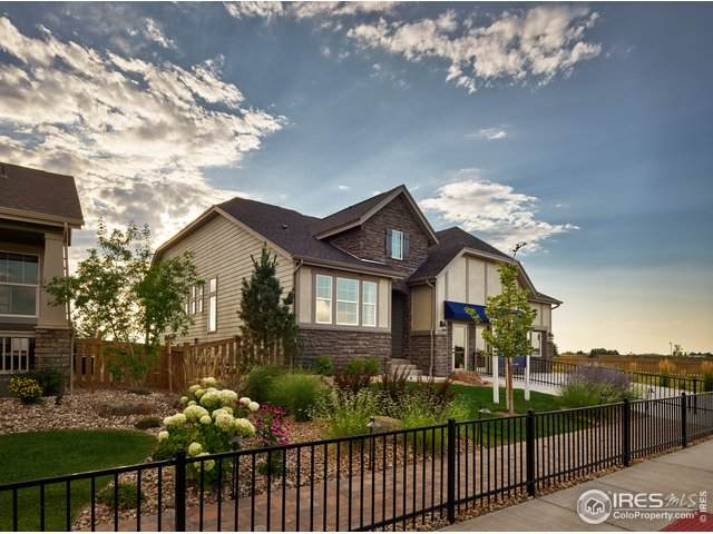 5387 Alberta Falls St, Timnath, CO 80547 (#918943) :: James Crocker Team