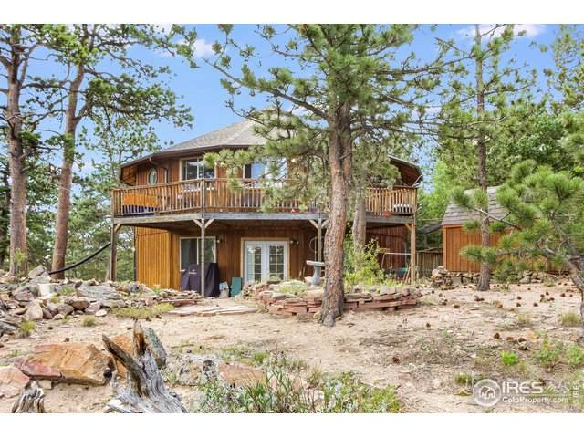 10 Kittle Ct, Allenspark, CO 80510 (#919241) :: Kimberly Austin Properties