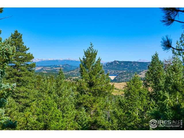 1257 Chute Rd, Golden, CO 80403 (MLS #919305) :: 8z Real Estate