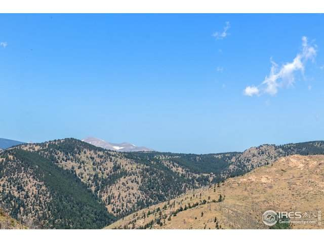 357 Mountain King Rd, Boulder, CO 80302 (MLS #919370) :: Kittle Real Estate