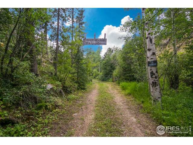 244 Sherwood Hill Ln, Bellvue, CO 80512 (MLS #919662) :: Downtown Real Estate Partners