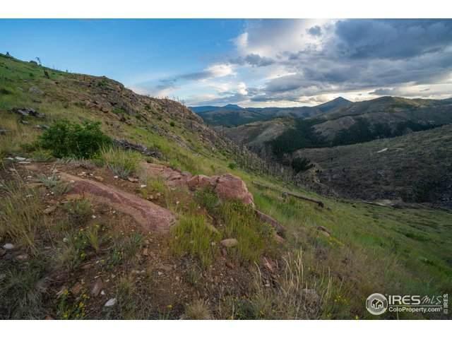 6601 Sunshine Canyon Dr, Boulder, CO 80302 (MLS #919776) :: Jenn Porter Group