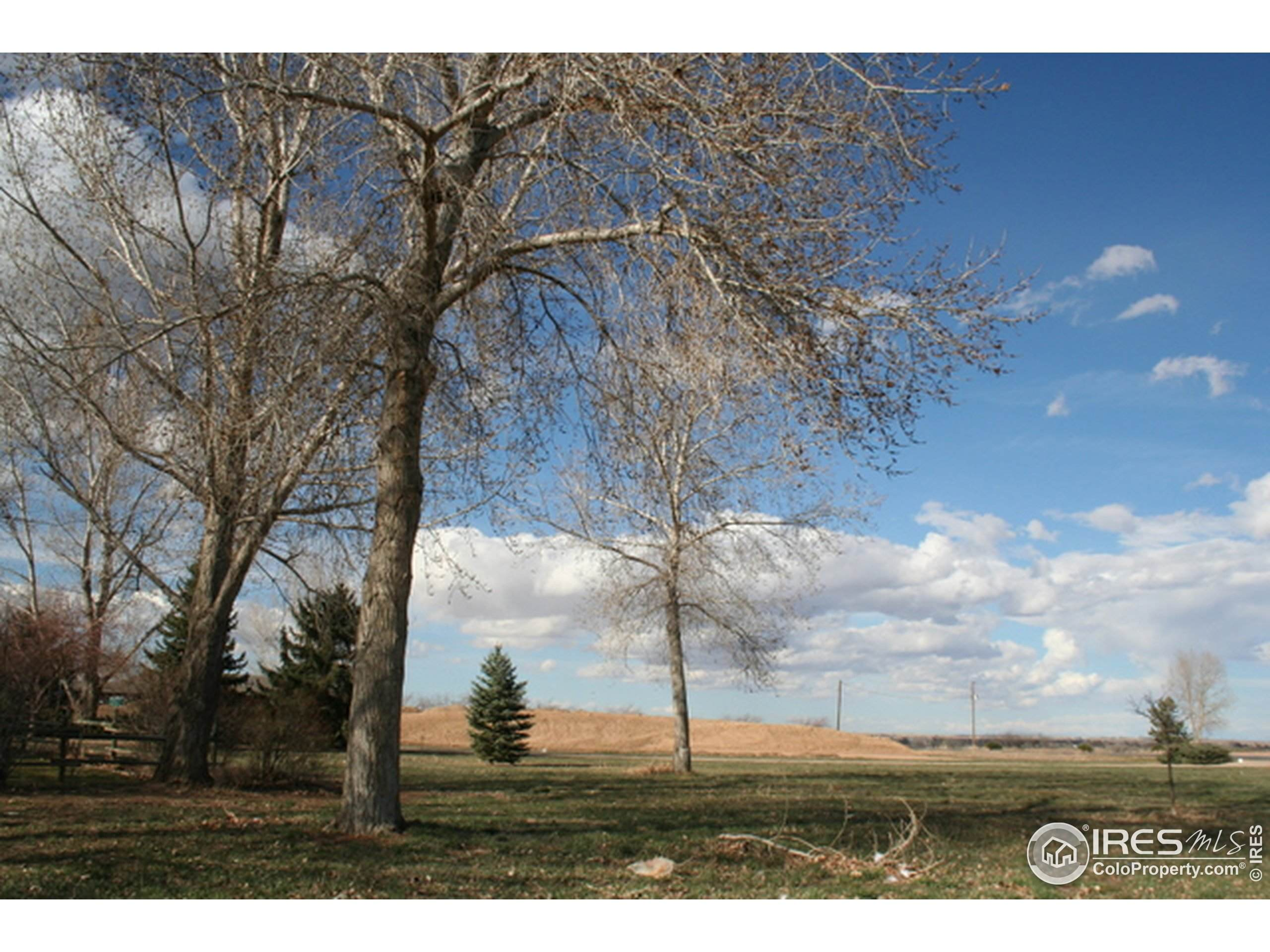 291 W Sycamore Ln, Louisville, CO 80027 (MLS #919938) :: June's Team