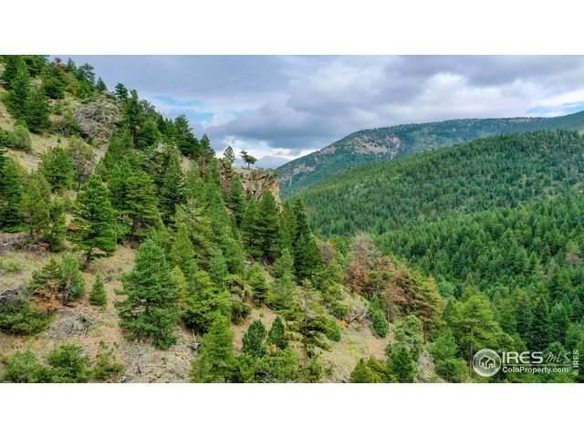 10861 Fourmile Canyon Dr, Boulder, CO 80302 (MLS #919983) :: 8z Real Estate