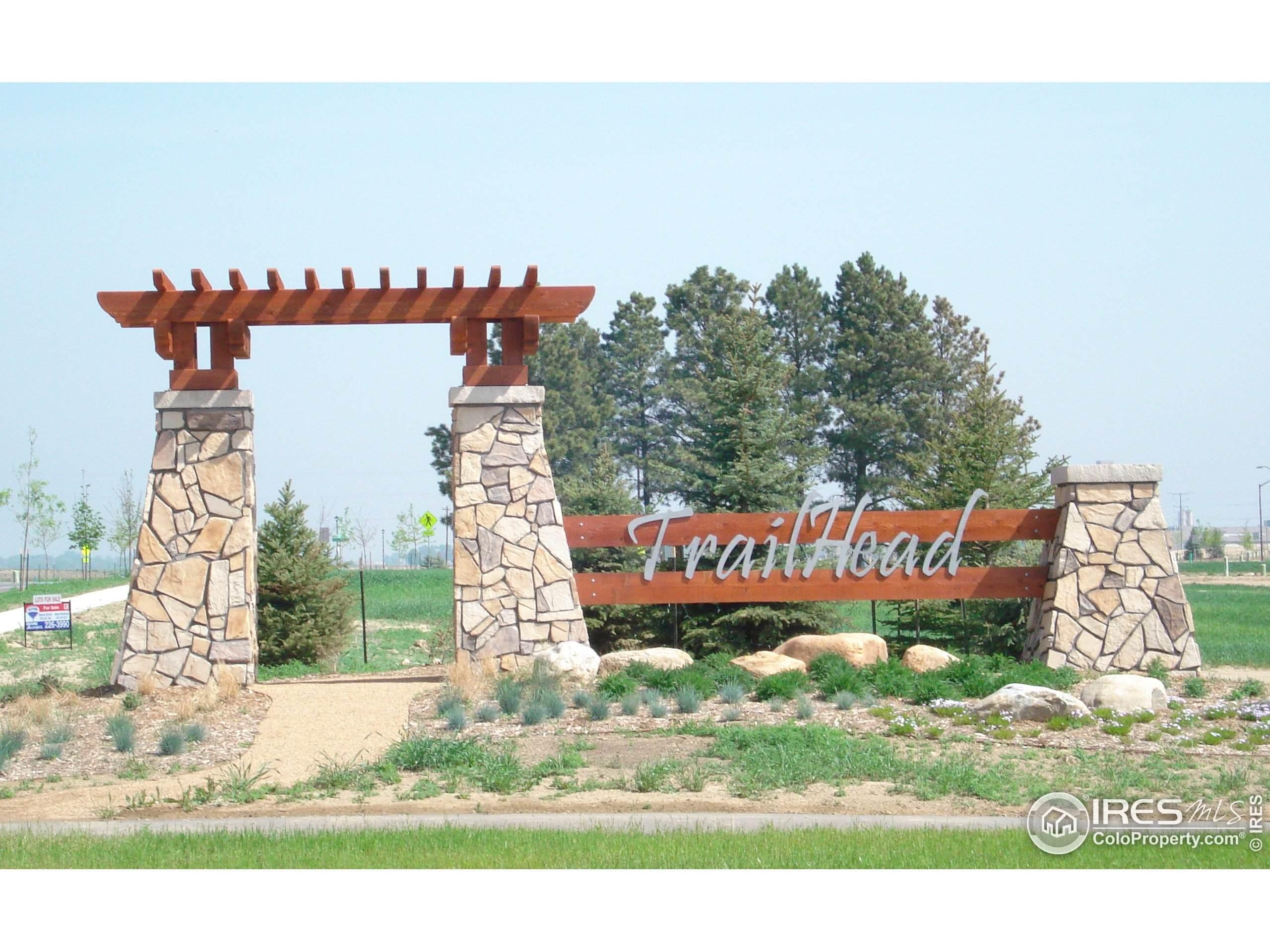 449 Whitney Hbr, Windsor, CO 80550 (MLS #920038) :: 8z Real Estate