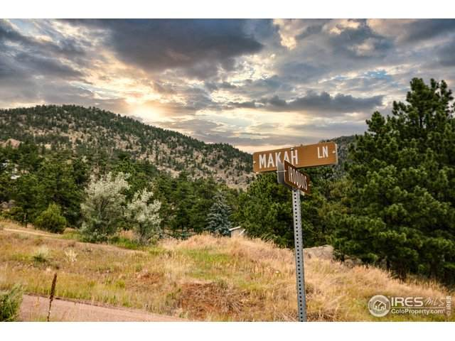 148 Makah Ln, Lyons, CO 80540 (MLS #920081) :: Colorado Home Finder Realty