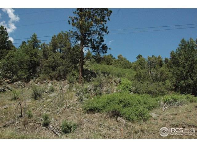 Dunraven Glade Rd, Glen Haven, CO 80532 (MLS #920111) :: Tracy's Team