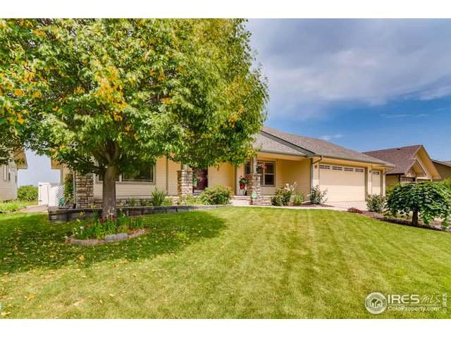 203 N 60th Ave, Greeley, CO 80634 (MLS #920229) :: 8z Real Estate