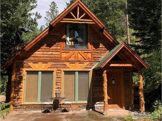 369 Riverside Dr, Lyons, CO 80540 (MLS #920345) :: Colorado Home Finder Realty
