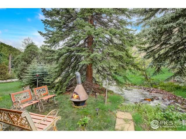 1000 Chicago Creek Rd, Idaho Springs, CO 80452 (#920477) :: The Margolis Team