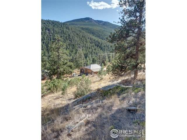 10683 Twin Spruce Rd, Golden, CO 80403 (MLS #920772) :: 8z Real Estate